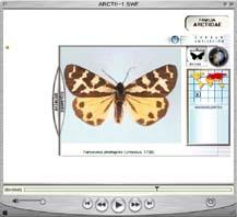 Visita virtual al Museo de Historia Natual
